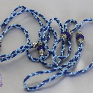 Guia Bleu